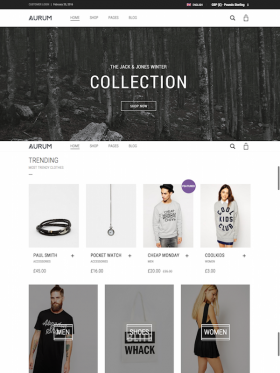 Aurum Minimalist Shopping Theme