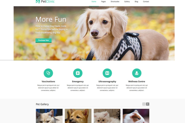 PetClinic – Responsive WordPress Theme For Veterinary Websites 2014 10 22 18.19.17